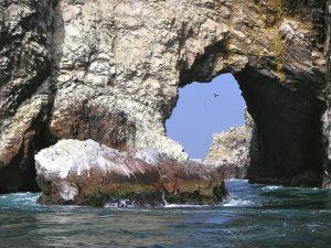 The National Reserve of Paracas, Perú.