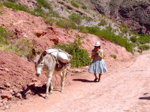 The start of the trail to the Salt Mines of Maras (Salinas de Maras), Cusco.